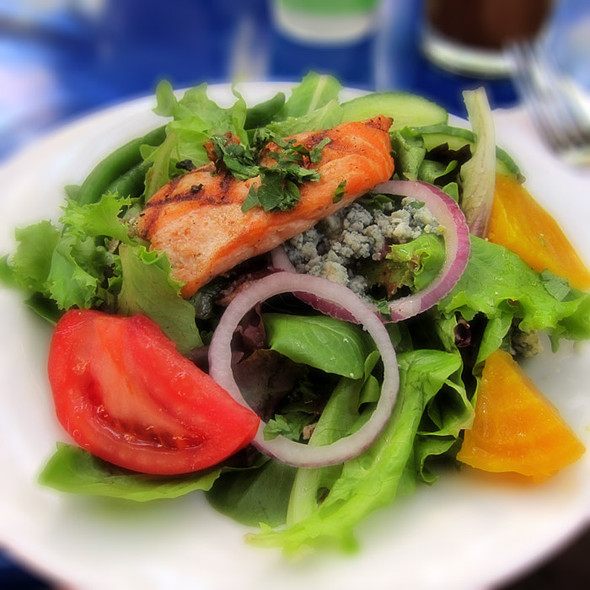Grilled Salmon Salad - Novo Restaurant, San Luis Obispo, CA