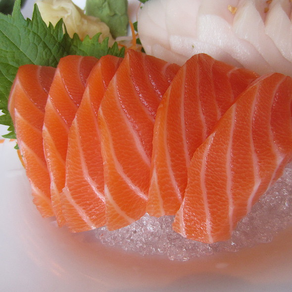 Salmon Sashimi - Uni Sushi, The Woodlands, TX
