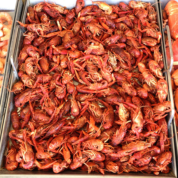 Boiled crawfish @ Maine Avenue Fish Market
