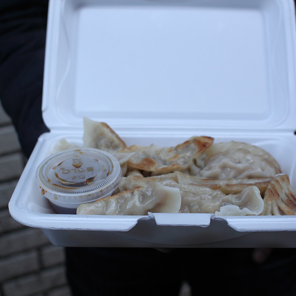 Fried Pork Dumplings @ Tasty Hand'pulled Noodles Inc