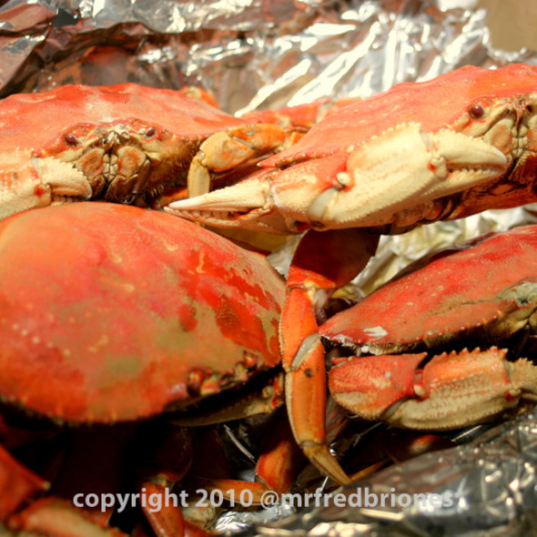 Dungeness Crab @ 99 Ranch Market