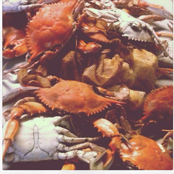 Boiled crabs @ Indian Bayou