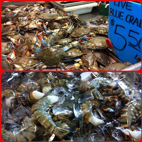 Live Blue Crab & Black Tiger Shrimp @ Chinatown Fish Market