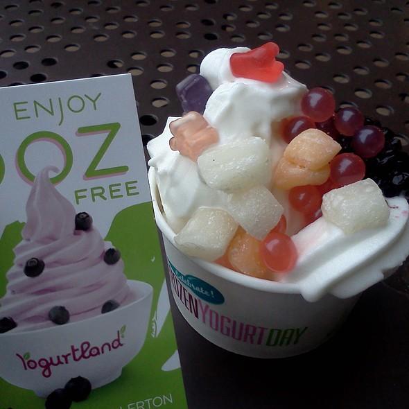 Free Yogurt @ Yogurtland
