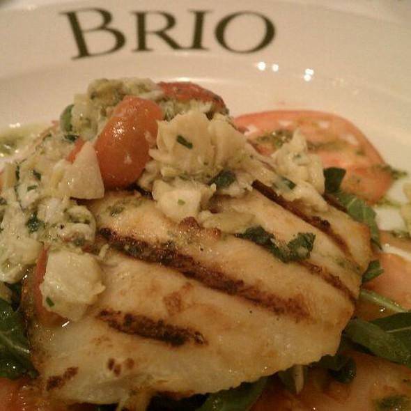 Corvina @ Brio Tuscan Grille