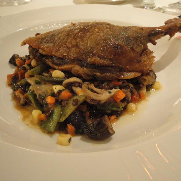 Crispy Confit of Muscovy Duck Leg @ Padovani's Grill