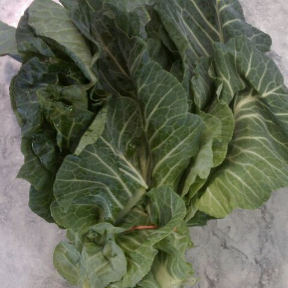 Collard Greens @ Broad Street Market