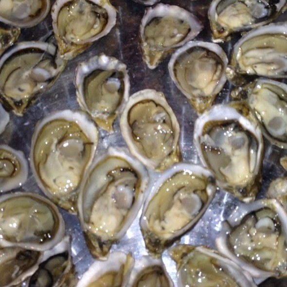 Shigoku Oysters Simply The Best On The Planet @ Rue Saint Jacques Restaurant