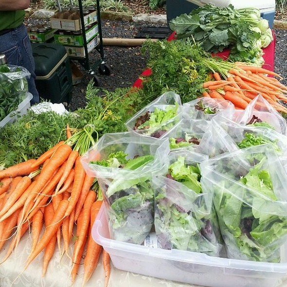 Carrots & Spring Mix @ City Hall Farmers Market-Urban Harvest
