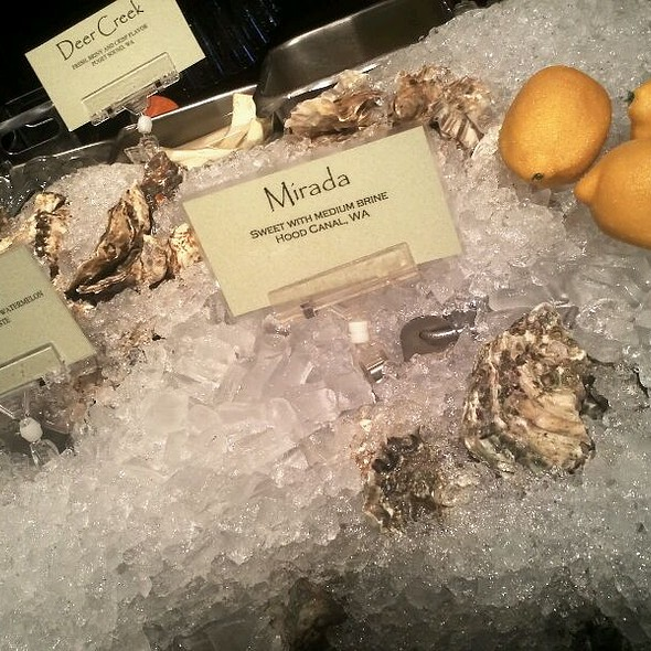 Fresh Oysters @ Shuckers