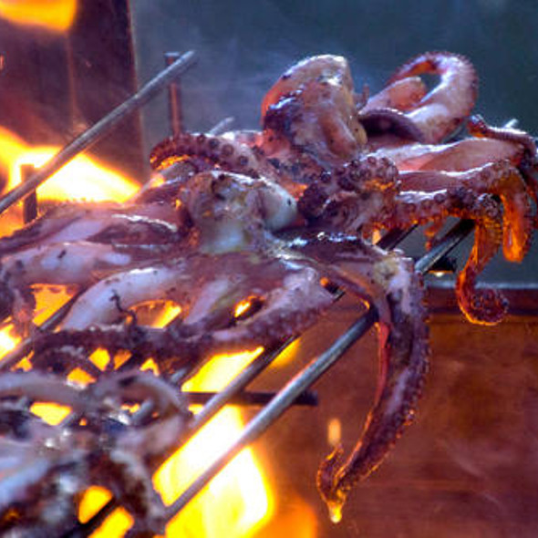 Octopus @ Gault Seafood