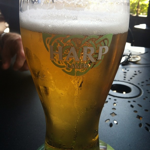 Harp Lager @ The Pub Tampa