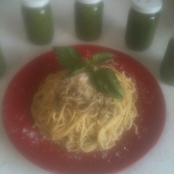 Gigi Ganjay Pesto Sauce W/ Pasta &Fresh Grated Parmensean Cheese @ Tropical Island Gourmet