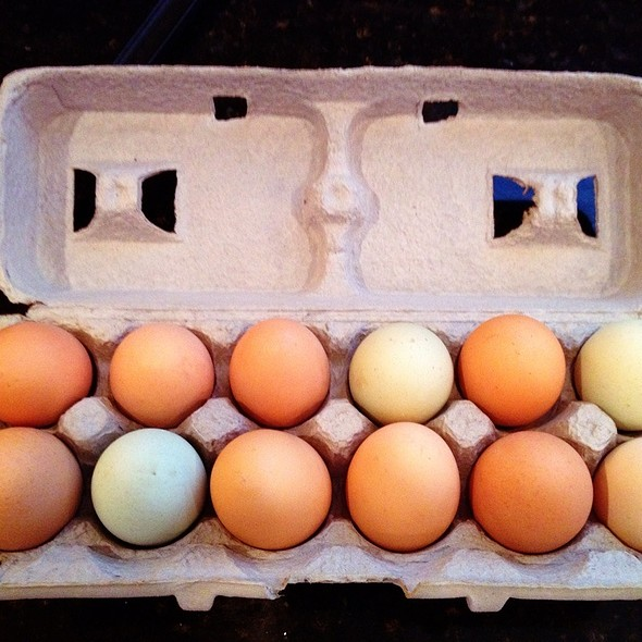 Pastured Eggs @ Whole Foods Market