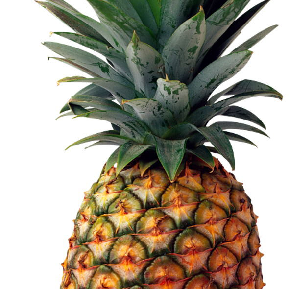 Fresh Pineapple @ Facebook Headquarters