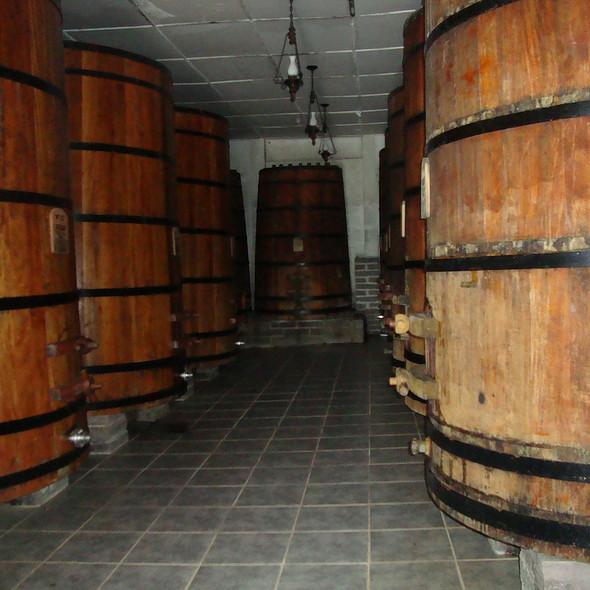 Barris de armazenamento dos vinhos. @ Vitivinícola Jolimont