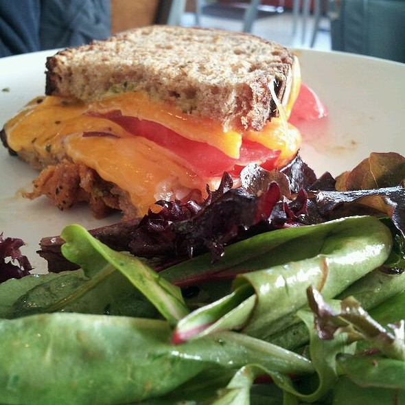 Grilled Cheese With Side Salad @ Chameleon Cafe The