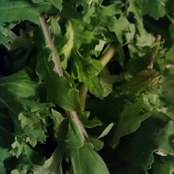 Fresh Kale @ Maplewood Farmers Market