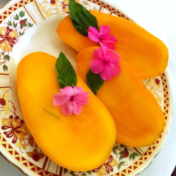 Philippine Mango @ Sonya's Garden