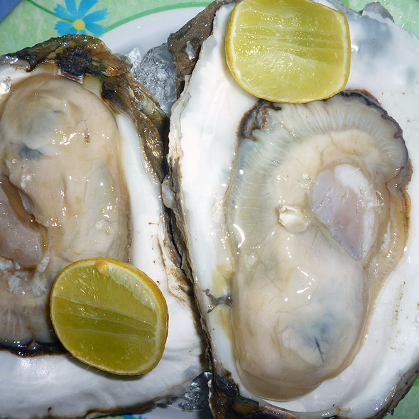 Raw Oyster @ Quán 448