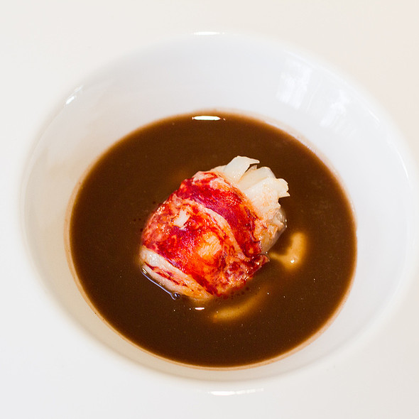 Lobster in rabbit sauce with chocolate