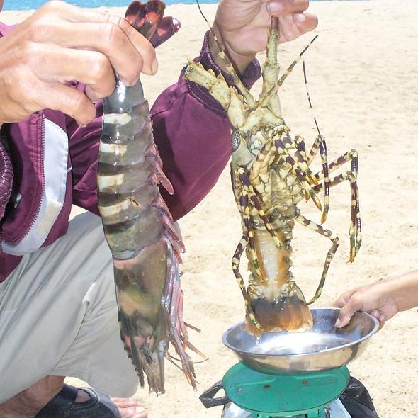 Lobster And Shrimp @ Nha Trang Beach