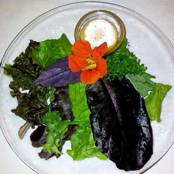 Farm To Table Salad @ Zen Forrest
