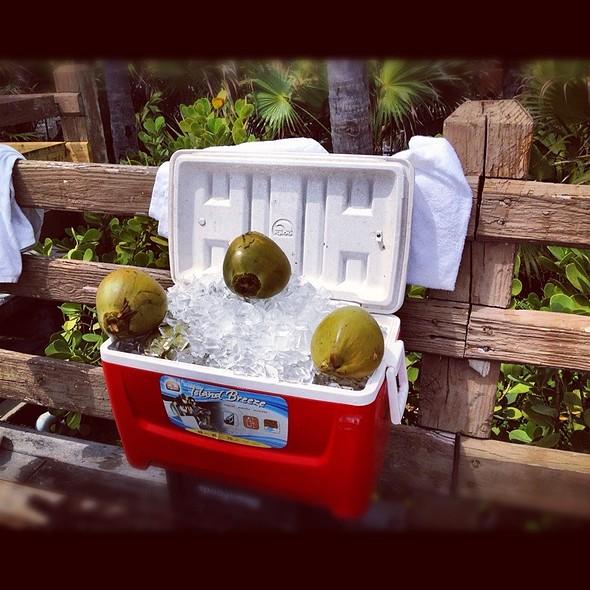 Coconuts @ Fontainbleu