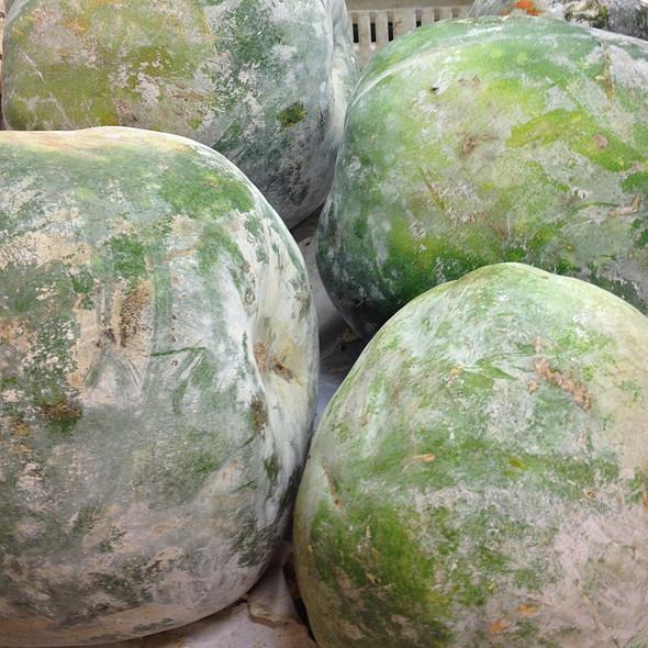 Winter Melon @ Hong Kong City Mall