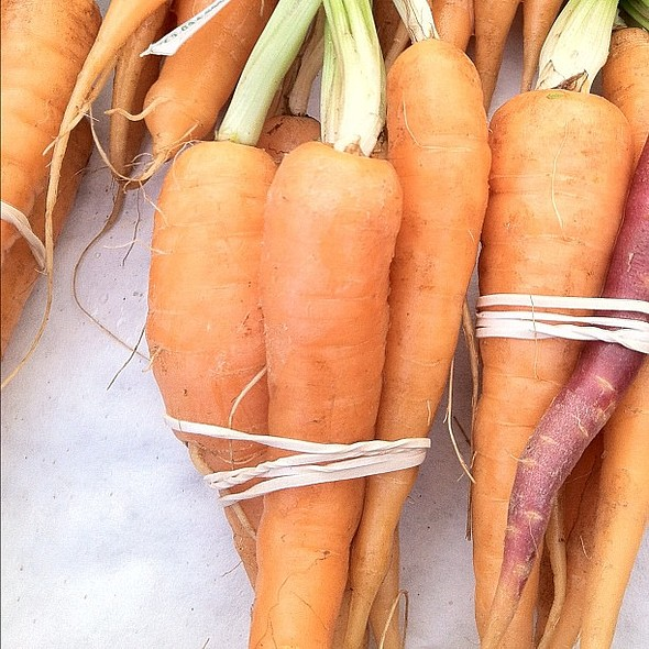 tiny carrots are tiny.  #farmersmarket @ Ferry Plaza Farmer's Market