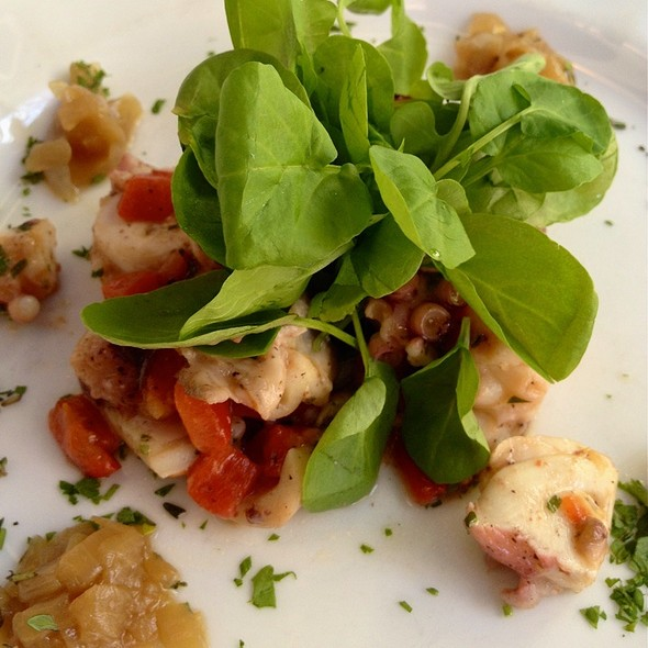 Octopus Salad @ Aquagrill