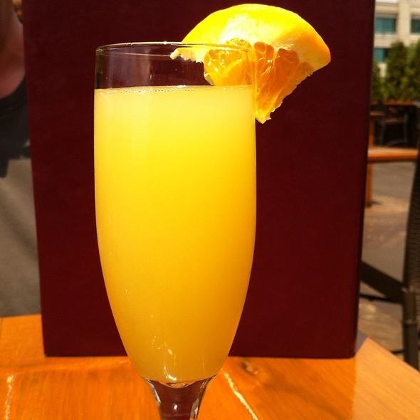 Mimosa - Arlington Rooftop Bar & Grill, Arlington, VA
