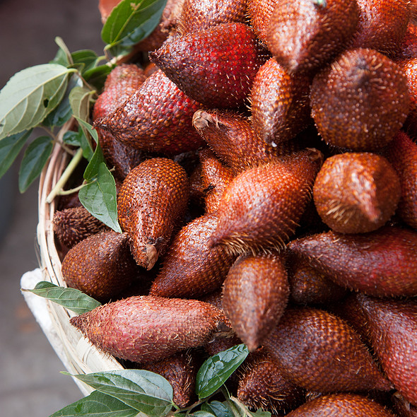 Snake Fruit (Salak)