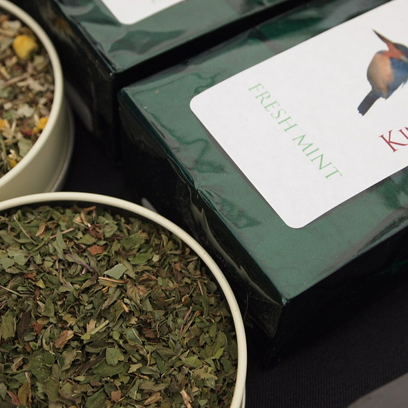 Tea @ Bloom Festival