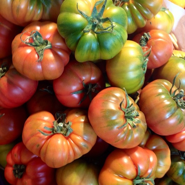 Pomodori Di Pachino (Pachino Tomatoes For Salads)