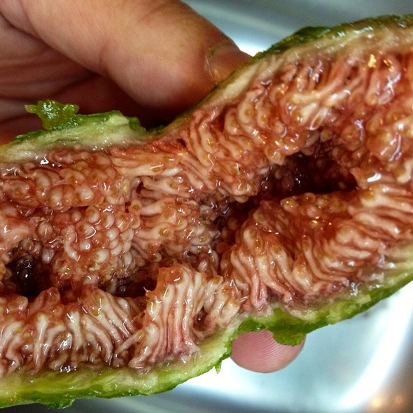 Fig (...A Little Bit Sexual Shaped!)