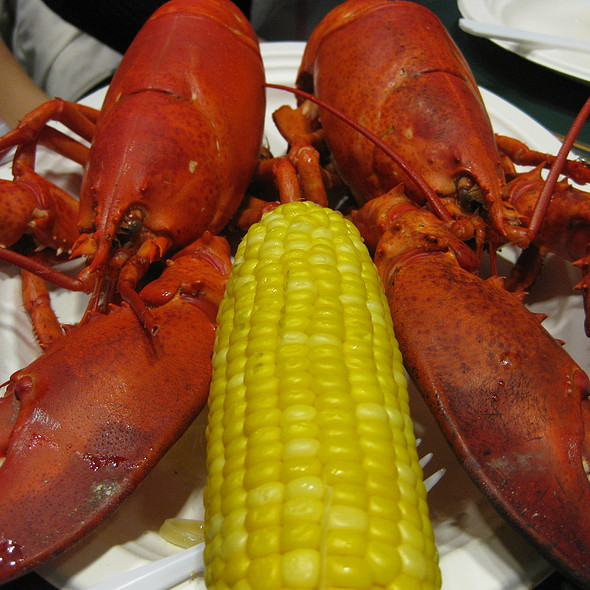 Lobsters @ Yankee Lobster