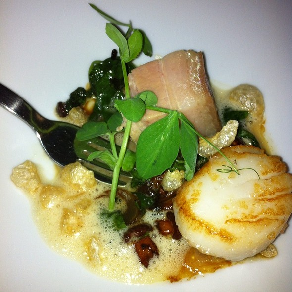 Scallop And Pork Belly On Mushrooms @ Shane's Restaurant