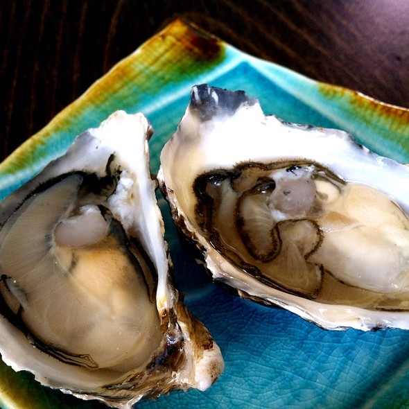 Carlsbad Blond Oyster