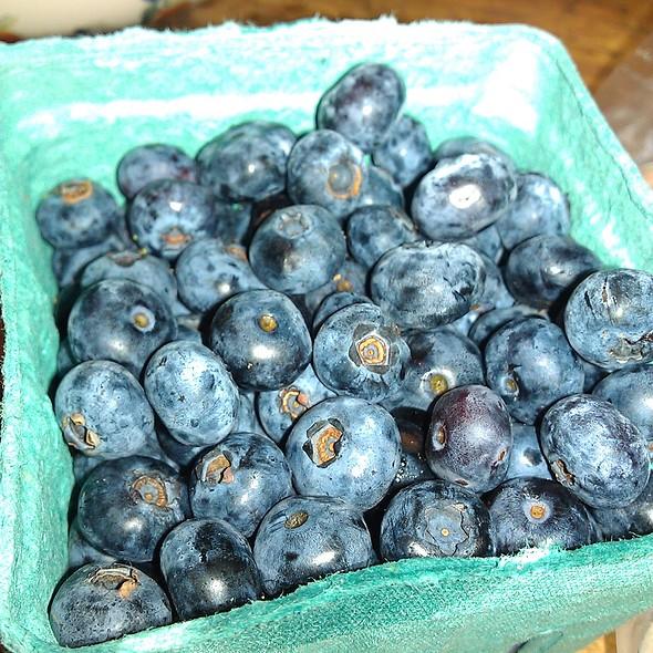 Blueberries @ Crop Circle