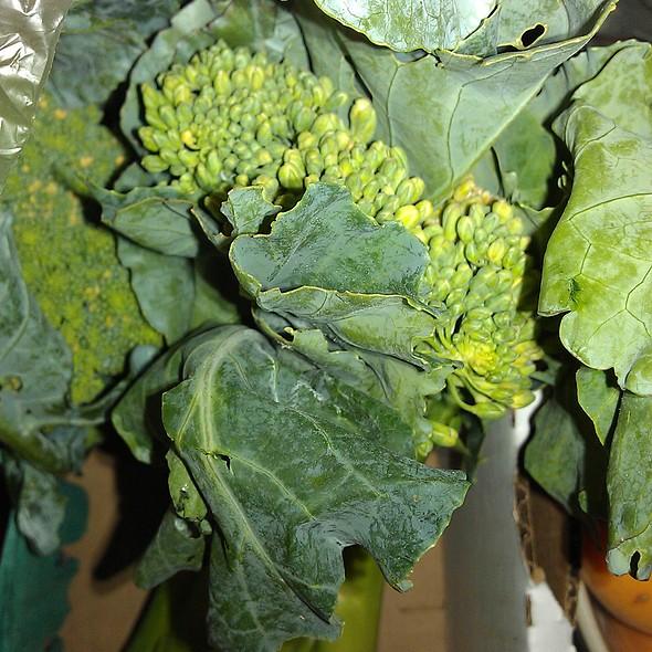 Broccoli @ Deep Mud Farm