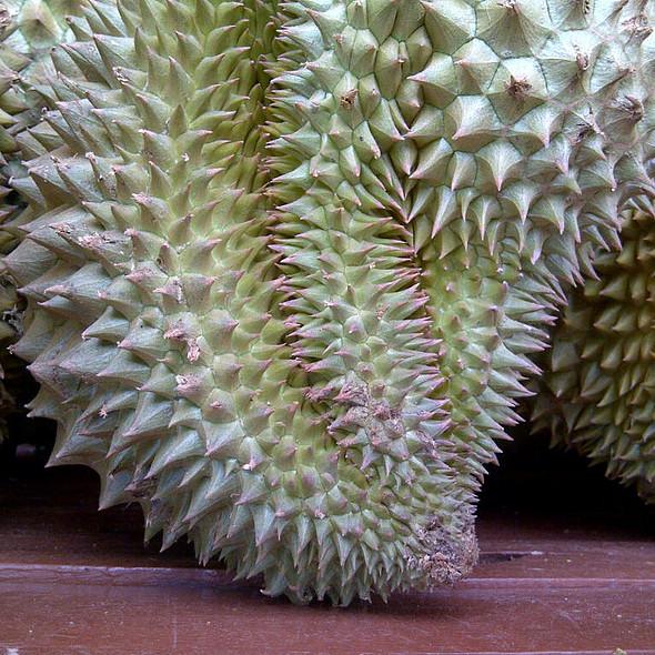 Durian @ Street Cart