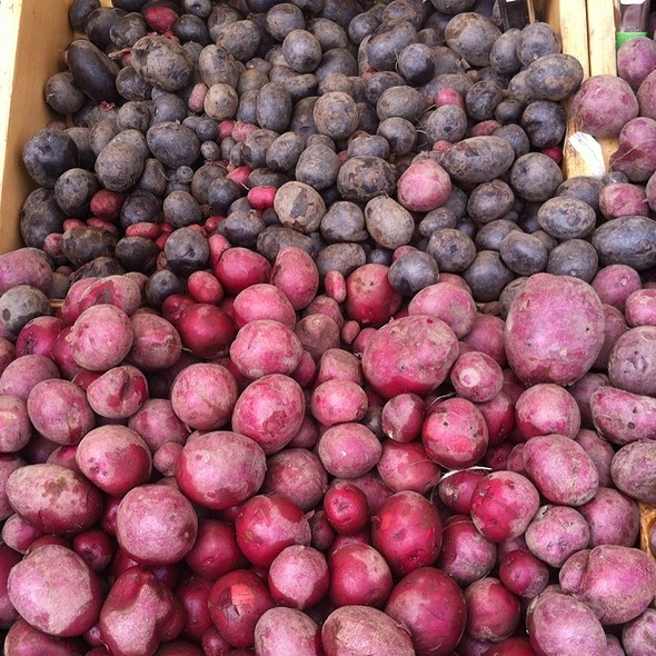 Purple Potatoes @ Mountain View Farmers' Market