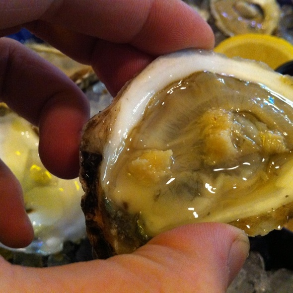 Blue Point Oysters @ Quality Seafood Wholesale