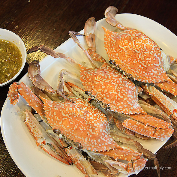 Steamed blue sea crabs | ปูม้านึ่ง @ บ่อฝ้ายชายทะเล ร้านอาหาร