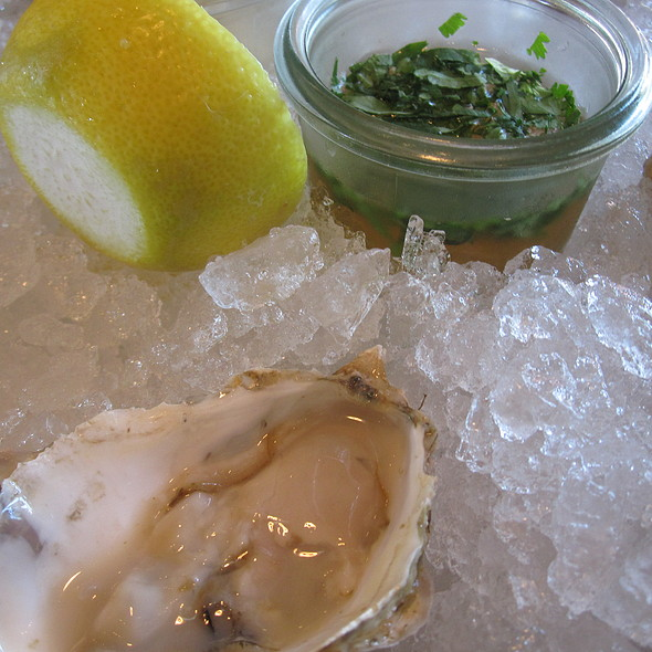 Oyster @ The Optimist