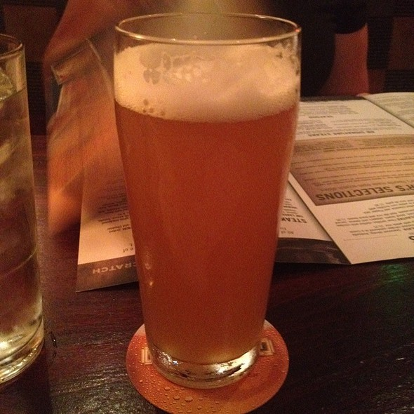 Belgian White Ale @ Rock Bottom Restaurant and Brewery