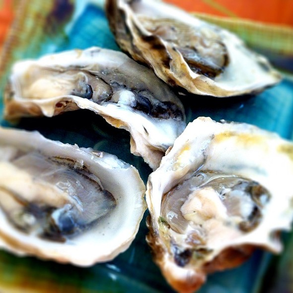 Beautiful Bivalves