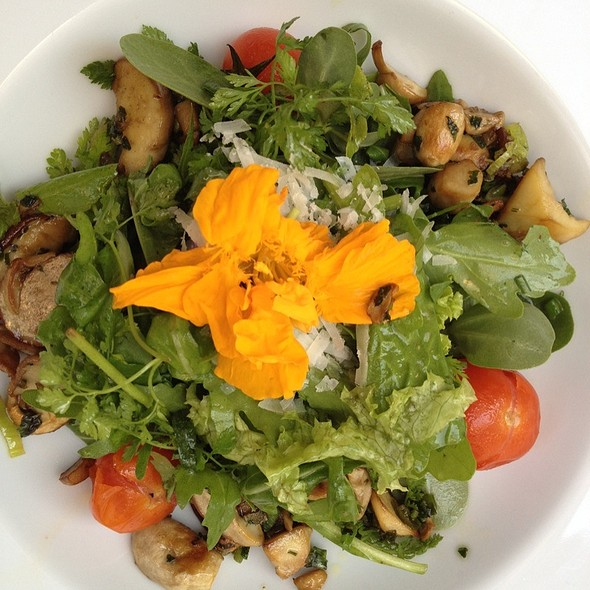 Salat Mit Steinpilzen @ Hotel Restaurant Bar Weißer Bock