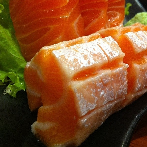Toro Salmon Sashimi @ Sushi Masa